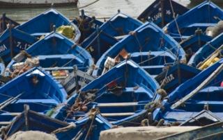 barcas-portada
