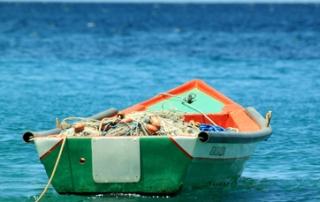 pesca-acuicultura-portada