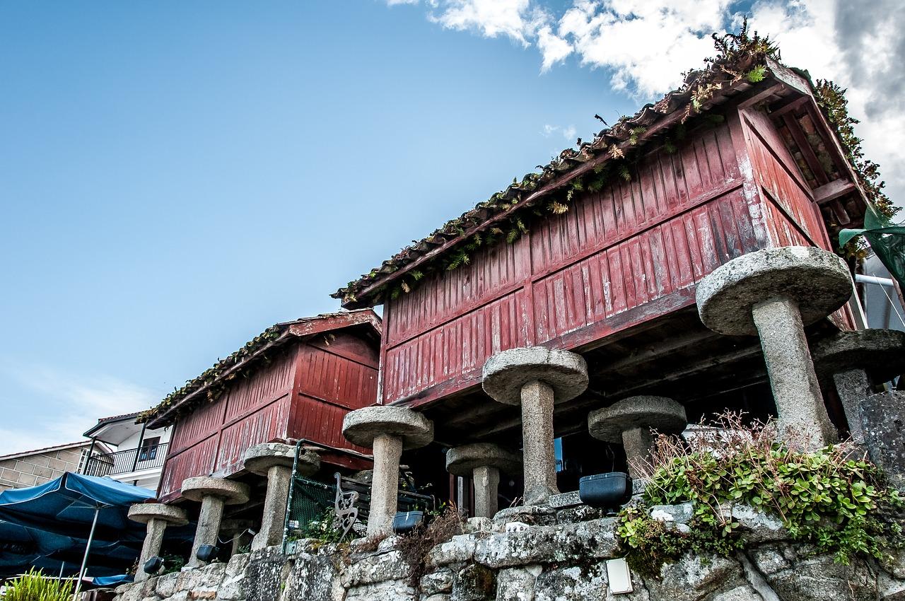 La Edad Media fue un periodo intenso para la lengua gallega, con un gran esplendor al principio y los llamados Siglos Oscuros al final de la Edad Media.